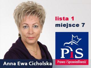 W polityce potrzebne są nowe twarze i uczciwi ludzie – rozmowa z Anną Ewą Cicholską