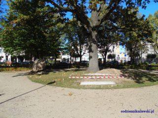 Pamiątkowy kamień w parku będzie przeniesiony