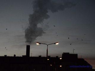 Normy przekroczone. Jak ograniczyć zanieczyszczenie powietrza?