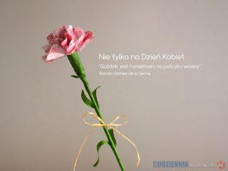 Goździk – nie tylko na Dzień Kobiet. Wiosenny kwiat z bibuły