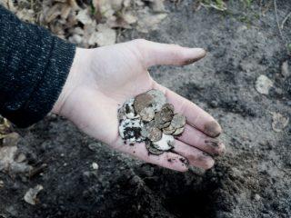 87 starych monet znalezionych przez rolnika spod Mławy