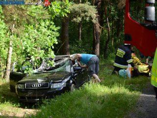Krośnice. Drzewo przygniotło samochód. Aktualizacja