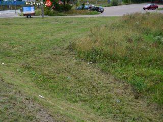 Kto powinien skosić trawę obok wiaduktu?