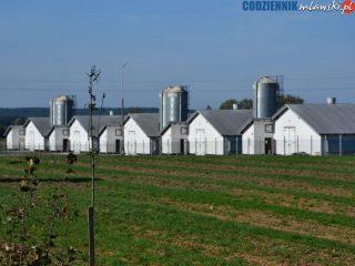 Wojewoda uchylił decyzję o pozwoleniu na budowę fermy drobiu w Dąbku