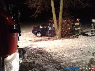 Wypadek koło Borowego