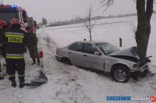 Stupsk. BMW uderzyło w drzewo