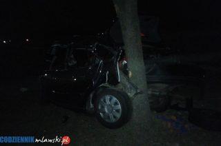 Uniszki Zawadzkie. Audi uderzyło w drzewo