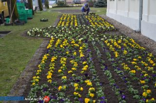 Pierwszy dzień wiosny w Mławie