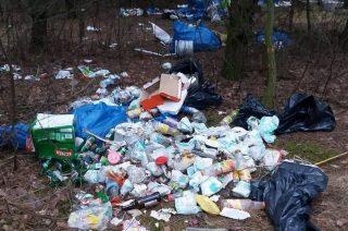 Świeża dostawa śmieci… do lasu