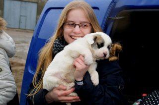Zebrana w szkołach karma już trafiła do schronisk dla zwierząt