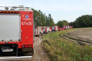 Ponad 100 strażaków gasiło pożar lasu! Spokojnie, to tylko ćwiczenia.
