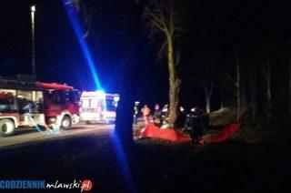 BMW uderzyło w drzewo. Śmiertelny wypadek koło Dębska