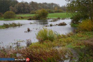 Wsparcie dla rolników z tytułu klęsk żywiołowych. Kolejny nabór wniosków w grudniu