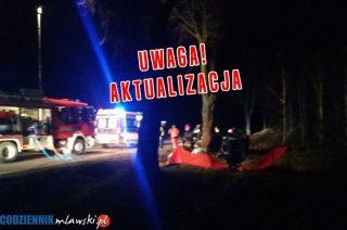 AKTUALIZACJA: Pod Dębskiem zginął 25 – letni mężczyzna w BMW.