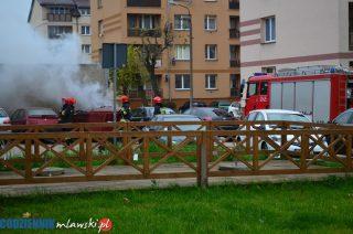 Strażacy błyskawicznie ugasili pożar w śmietniku
