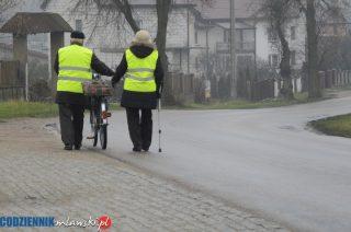 Uwaga! Dziś policja szczególnie zwróci uwagę na zachowania pieszych na drodze
