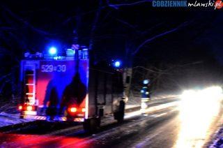 Ciężarówka ze świniami blokująca drogę i połamane drzewa. Pracowita noc strażaków