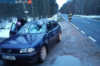 Opel skasowany. Łoś uciekł do lasu