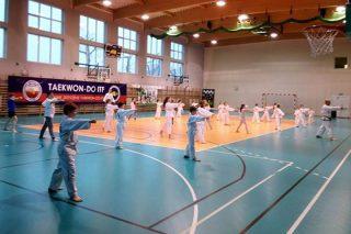 """Otwarte Seminarium Taekwondo ITF w """"szóstce"""""""
