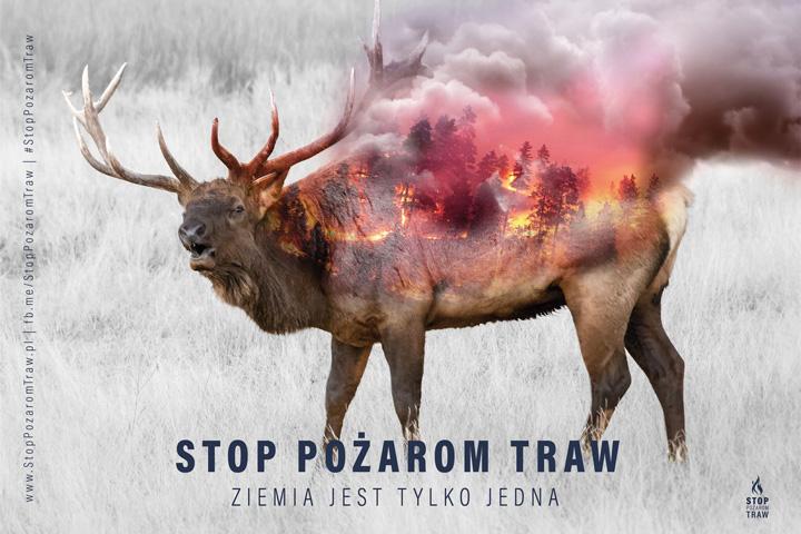 kampania stop pożarom traw plakat wypalanie traw