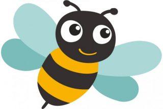 Po raz pierwszy w naszym mieście Mławskie Święto Pszczoły, zapraszamy!