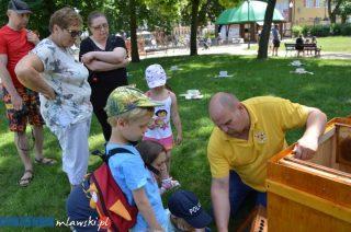 2 w 1 w parku miejskim – Dzień Dziecka i II Mławskie Święto Pszczoły