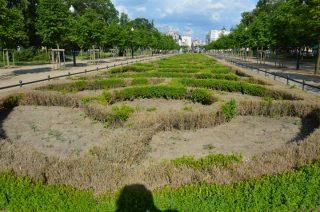 Zabytkowy park w Mławie zmienia swoje oblicze