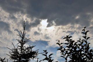 IMGW ostrzega: silny wiatr w powiecie mławskim