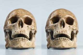 Żuromin. Dwie ludzkie czaszki podrzucone w reklamówkach