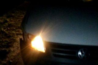 Stupsk. Volkswagen kontra dzik
