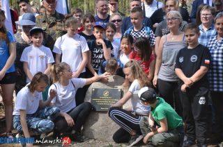 W mławskim lesie przybyło 80 dębów uwieczniających pamięć Obrońców Mławy z 1939 roku