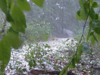 Powiat mławski: nadciągają burze z gradem [aktualizacja]