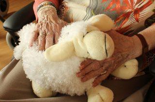 Mdzewko. Dwójka złodziei okradła 85-letnią kobietę
