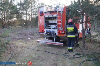 6 pożarów lasu w okolicy Podbornej. To podpalenia, policja apeluje do świadków