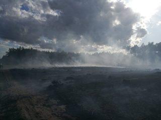 Duży pożar lasu w gminie Chorzele. W akcji pomagały samoloty gaśnicze Lasów Państwowych.