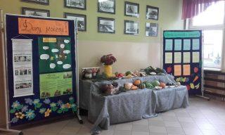 Skarby jesieni w Szkole Podstawowej nr 7 w Mławie