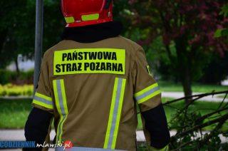 Strażacy usuwali powalone drzewa i pompowali wodę z piwnic