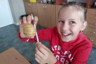Poziomice na ziemniakach – praktyczna lekcja geografii w SP 3