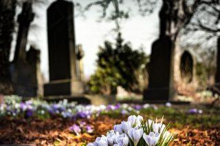 NIK: samorządowi włodarze nierzetelnie nadzorują zarządców cmentarzy komunalnych