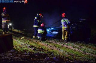 Parcele Łomskie. Auto wypadło z drogi i stanęło w płomieniach [zobacz foto]