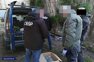 Akcja CBŚP i KAS. Na terenie powiatu mławskiego rozbito zbrojną grupę przestępczą [zobacz foto i film]