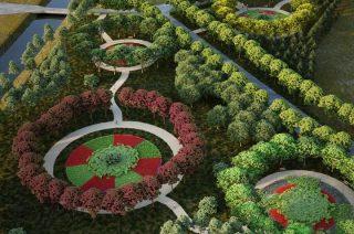 W Ciechanowie powstanie nowy park. 700 drzew posadzą ojcowie noworodków