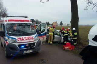 Dunaj. Samochód osobowy uderzył w drzewo (aktualizacja)