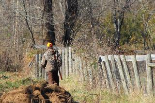 Ministerstwo Środowiska: Do lasów nie mają wstępu także myśliwi