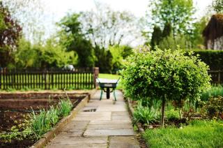 Czy ogródki działkowe to tereny zielone objęte zakazem przebywania?
