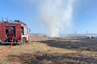 Strażacy 6 godzin gasili pożar łąk koło Przychodu [zobacz foto i film]