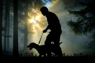 Dwudziestolatek na włamanie wybrał się z psem