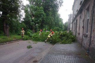 Potężny konar kasztanowca w poprzek ulicy Dworcowej