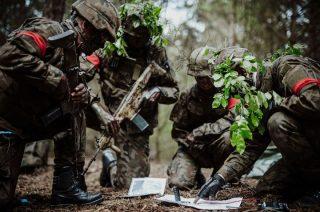 Terytorialsi odmrażają szkolenia. Ożyły poligony