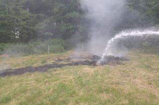 Pożar trawy tuż przy lesie
